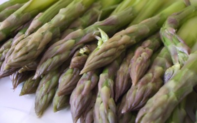 TORTIGLIONI alla panna e asparagi