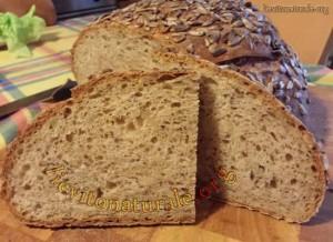 pane-a-fette-lievito-naturale