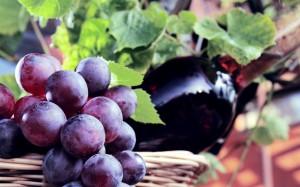 uva-e-vino
