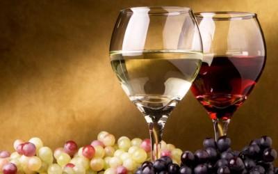 VINO, ALCOL &