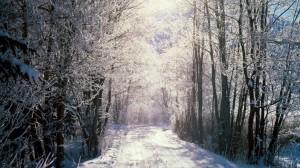 Natale-alle-porte