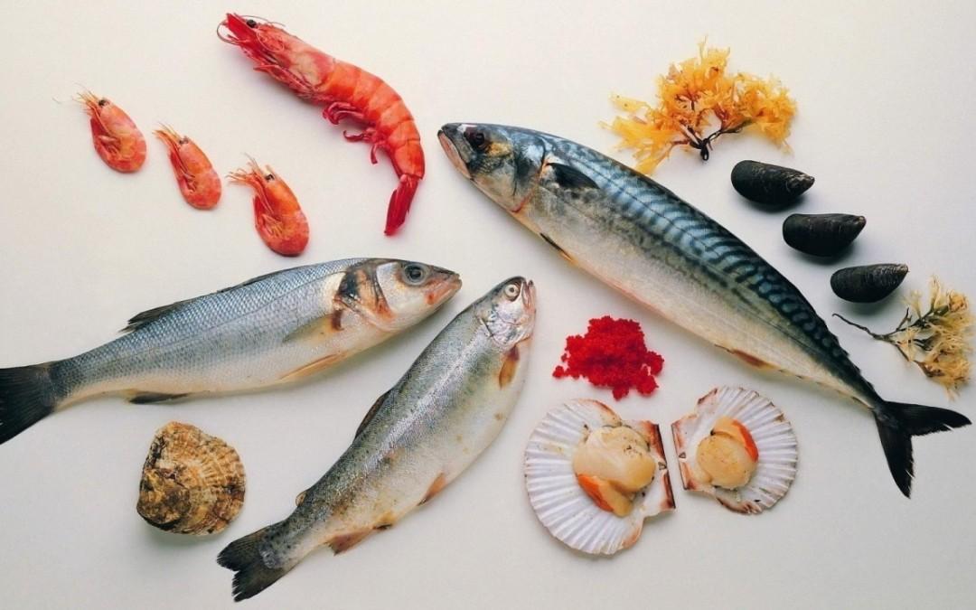 Il pesce: riconoscere la qualità