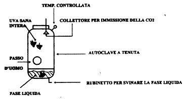 novello-autoclave