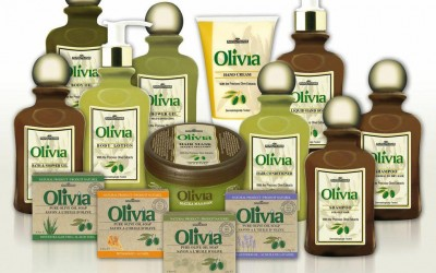 Le mille virtù dell'olivo