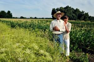 la-fattoria-biologica