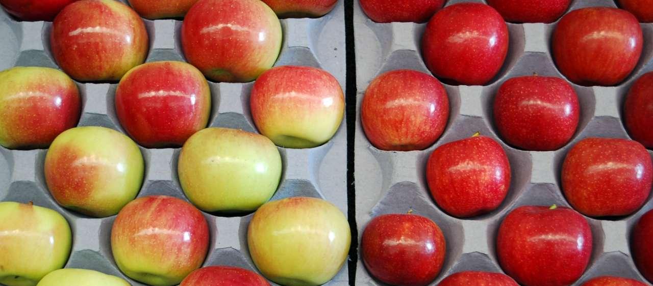 Sapete quanti additivi chimici ci sono nella frutta e nella verdura?