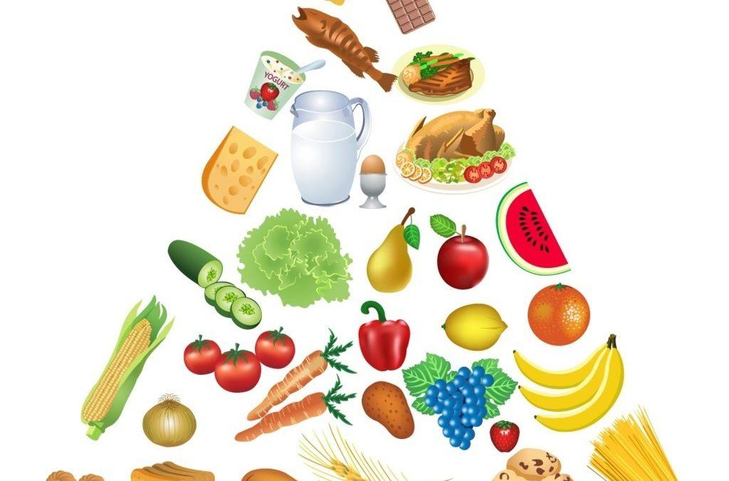 Educazione alimentare: cos'è?